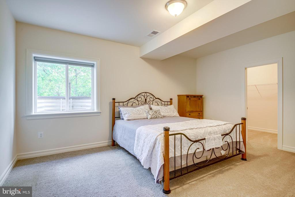 Basement Bed - 41062 LYNDALE WOODS DR, ALDIE
