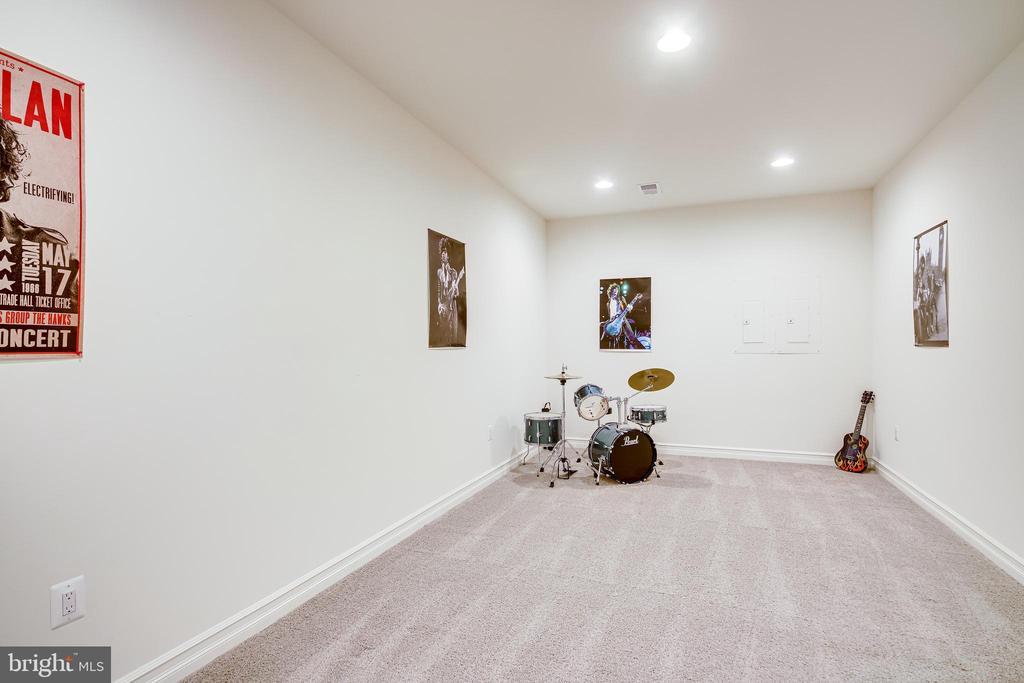 Basement Flex Room - 41062 LYNDALE WOODS DR, ALDIE