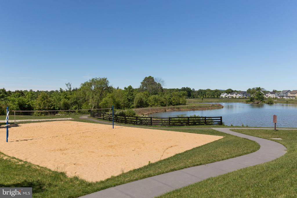 Sand Volleyball/Lake - 41062 LYNDALE WOODS DR, ALDIE