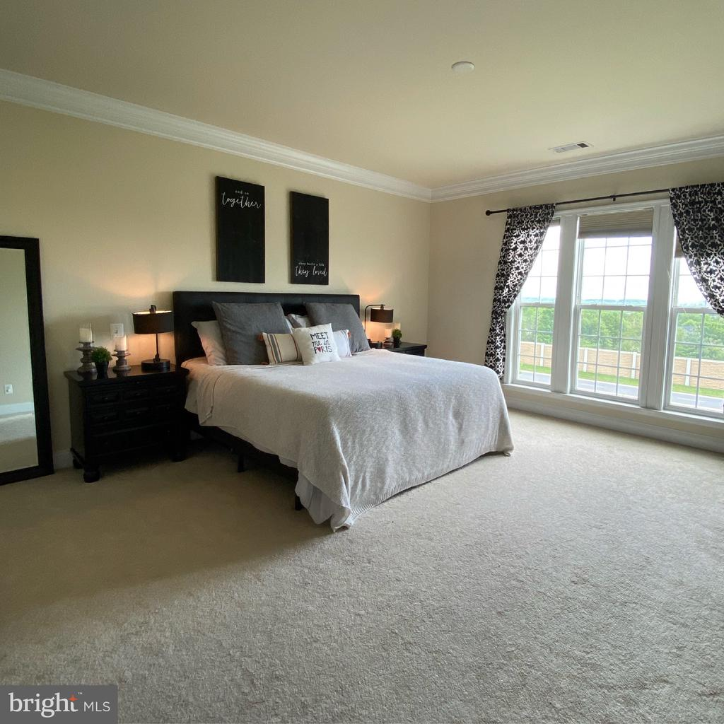 Large master bedroom - 20648 SIBBALD SQ, ASHBURN
