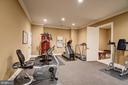 Spa Suite with Large Gym and Full Stone Bathroom - 8334 ALVORD ST, MCLEAN
