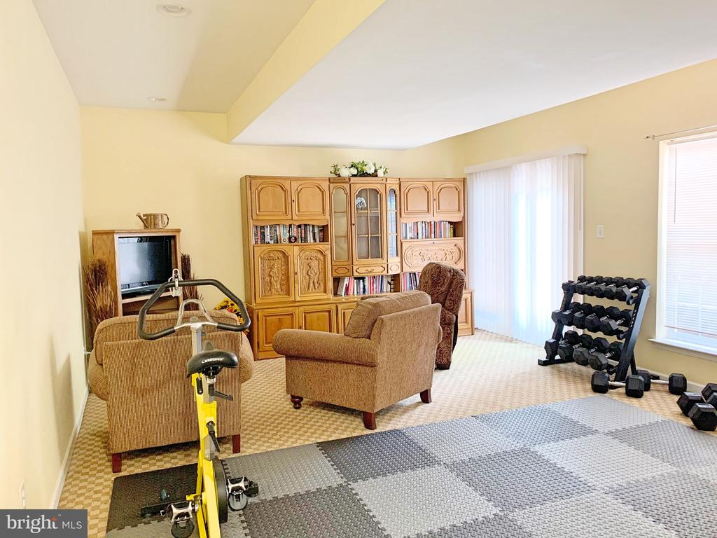 Rec room on the lower level - 25216 WHIPPOORWILL TER, CHANTILLY