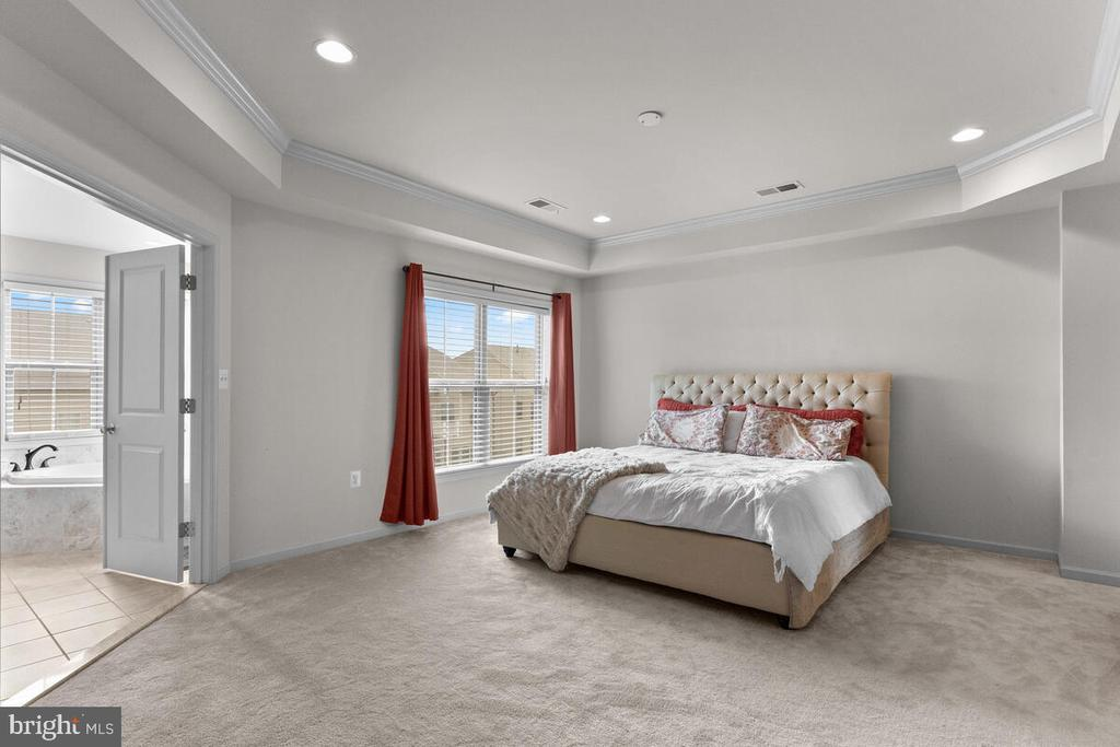 Spacious Master Bedroom w/ tray ceiling - 23636 SAILFISH SQ, BRAMBLETON