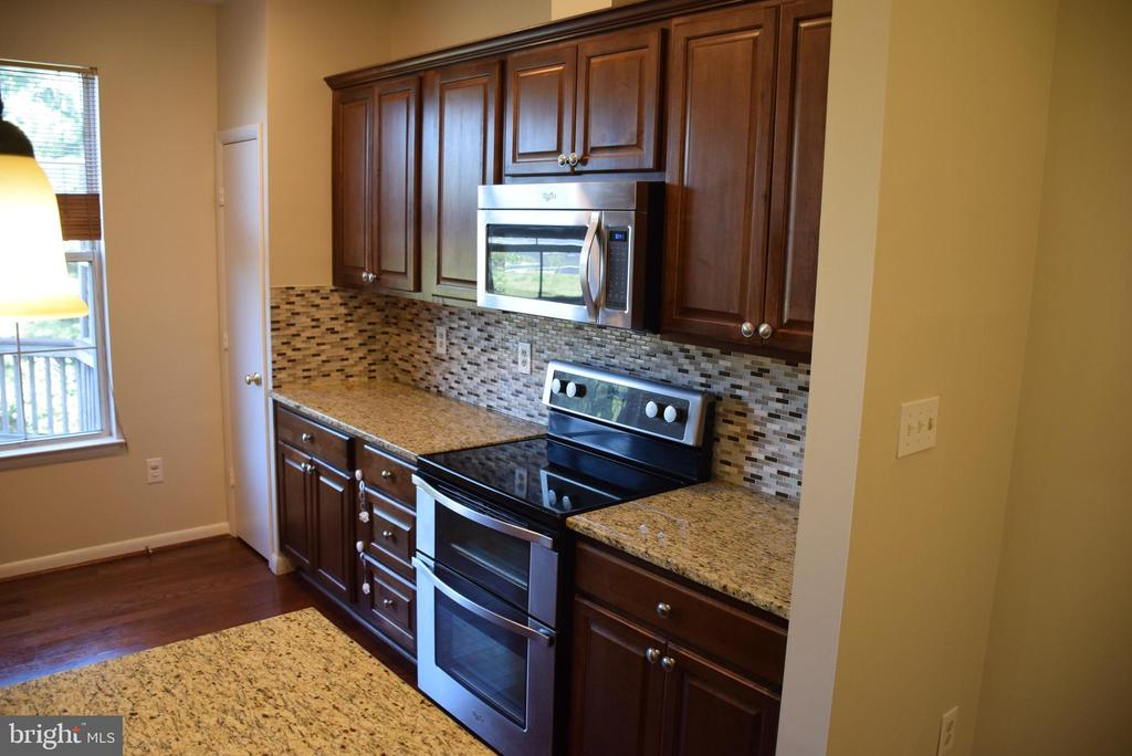 Granite Countertops and Stainless Steel Appliances - 44188 MOSSY BROOK SQ, ASHBURN