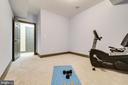 Bonus room #2 on lower level - 1904 MALLINSON WAY, ALEXANDRIA
