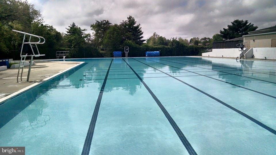 Largest public outdoor swimming pool in Loudoun - 52 WEDGEDALE DR, STERLING