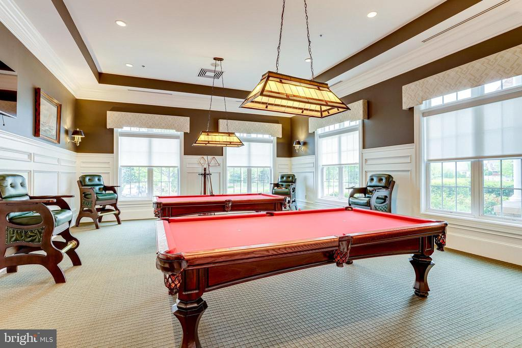 Billiard Room Adjacent to the Card Room - 20580 HOPE SPRING TER #207, ASHBURN