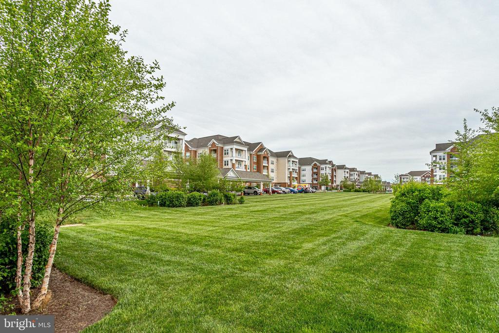 Open Land adjacent  to the Condos - 20580 HOPE SPRING TER #207, ASHBURN
