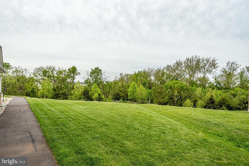 Walking Paths & Greenery Throughout Potomac  Green - 20580 HOPE SPRING TER #207, ASHBURN