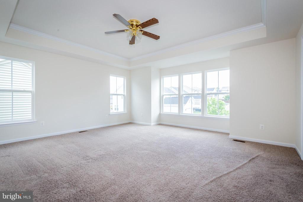 LARGE owners' suite with tray ceiling. - 502 APRICOT ST, STAFFORD