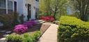 front yard - 20782 LUCINDA CT, ASHBURN