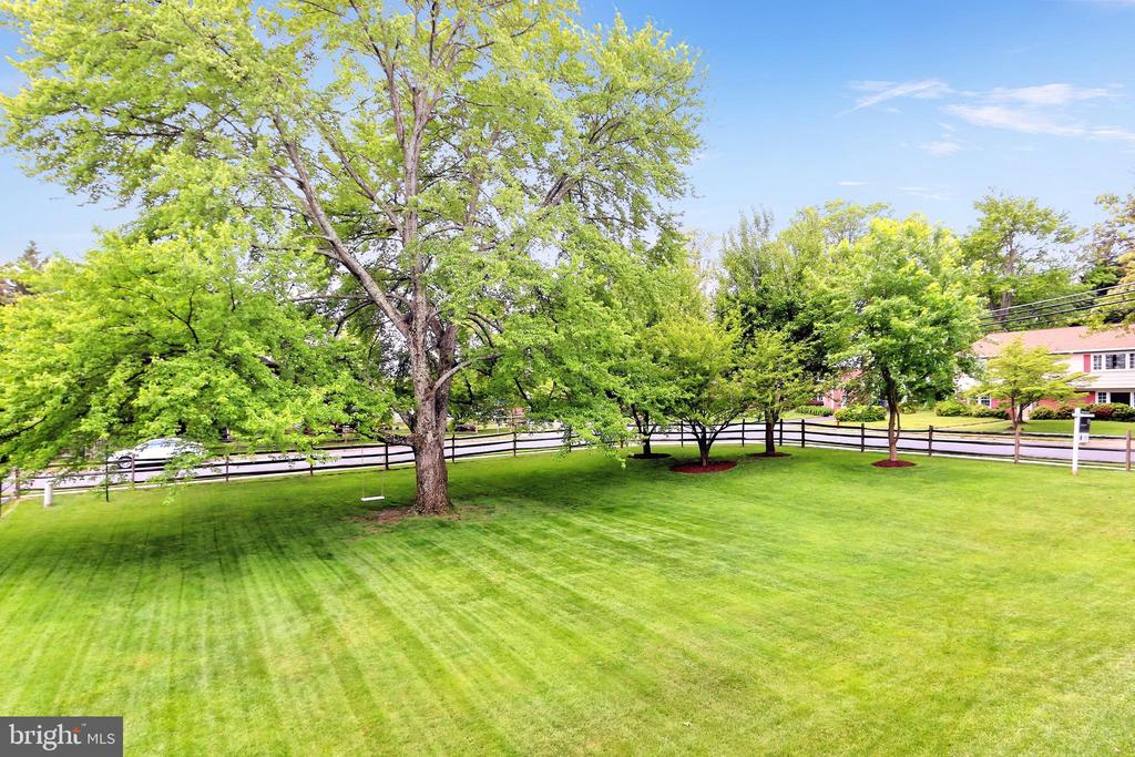 The perfect yard for fun and games! - 508 DRANESVILLE RD, HERNDON