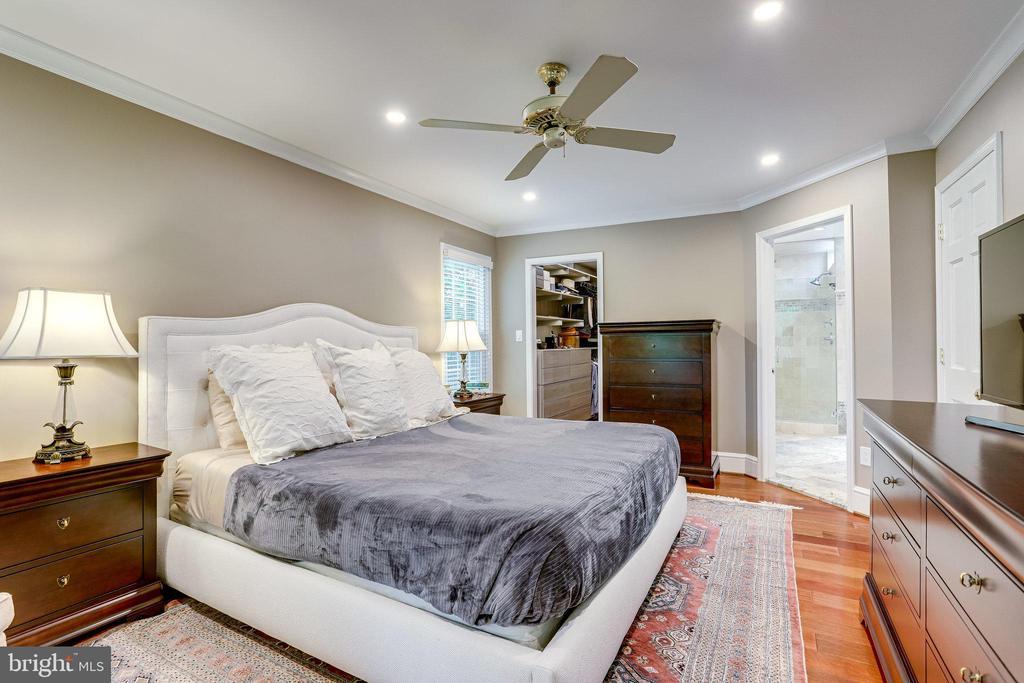 Master Bedroom - 11967 GREY SQUIRREL LN, RESTON