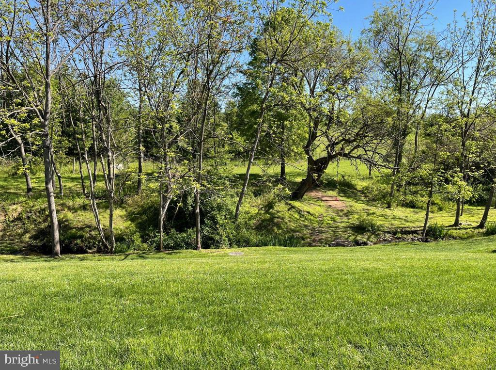 Backyard and view - 126 N JAY ST, MIDDLEBURG