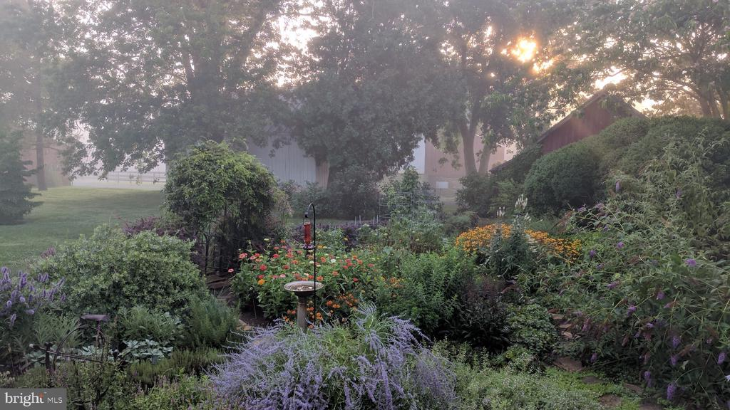 English garden - 20775 AIRMONT RD, BLUEMONT