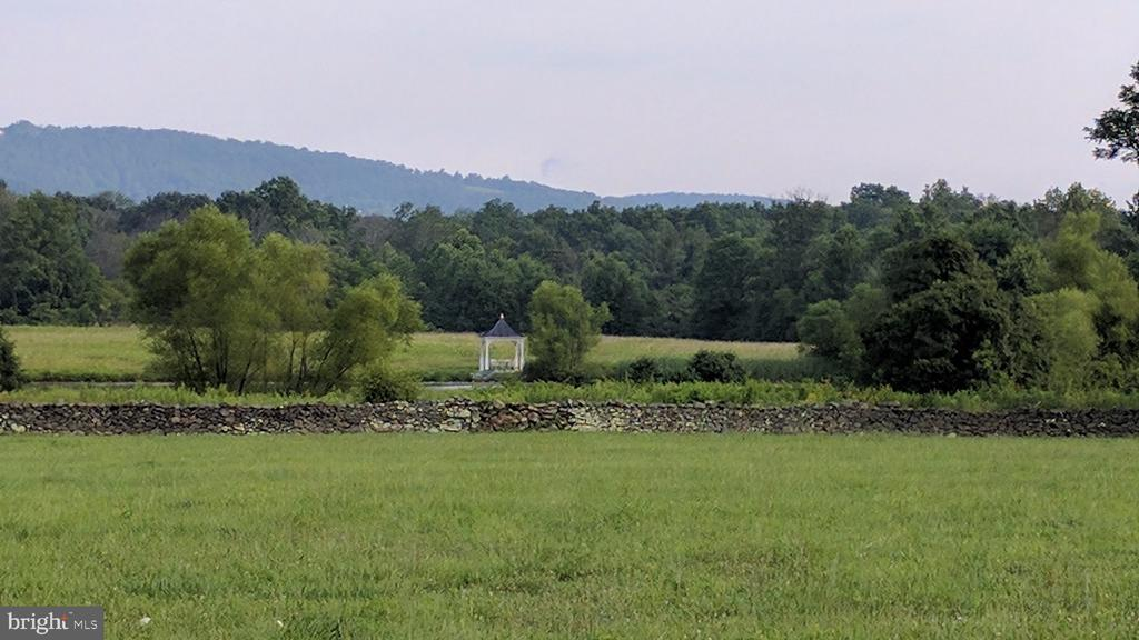 Field with stone wall, trees and mountain views - 20775 AIRMONT RD, BLUEMONT