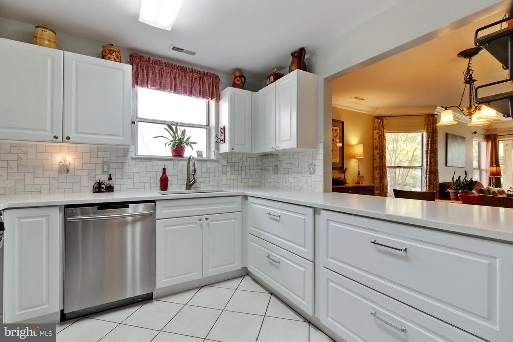Updated Counters - 20576 SNOWSHOE SQ #101, ASHBURN