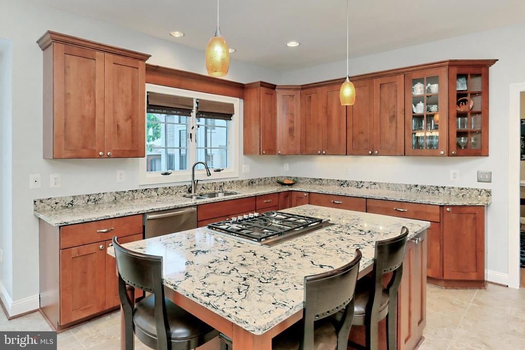 Gorgeous cabinets with Cambria quartz counters - 508 DRANESVILLE RD, HERNDON
