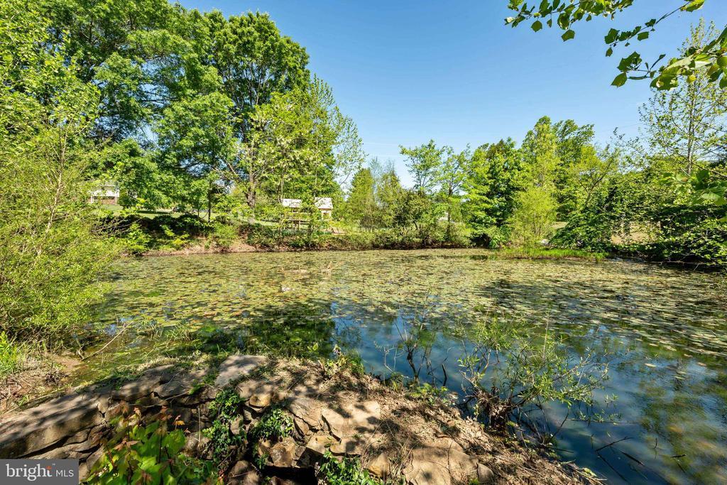 Pond - 4316 MOUNTAIN VIEW DR, HAYMARKET
