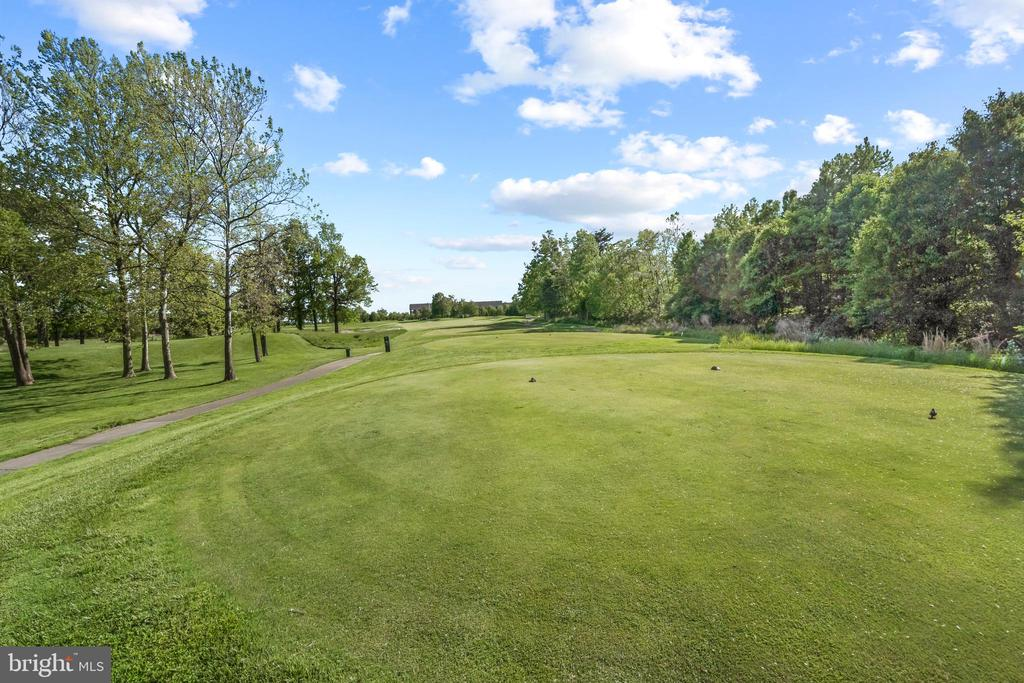 Views of the 3rd Hole of the RTJ Golf Course - 43327 RIVERPOINT DR, LEESBURG