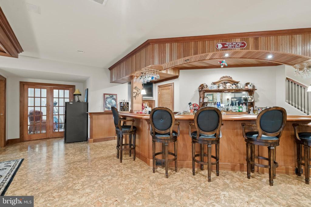 Truly Exceptional Lower Level with Custom Bar - 43327 RIVERPOINT DR, LEESBURG