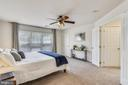 Owner's Suite - 43533 MINK MEADOWS ST, CHANTILLY