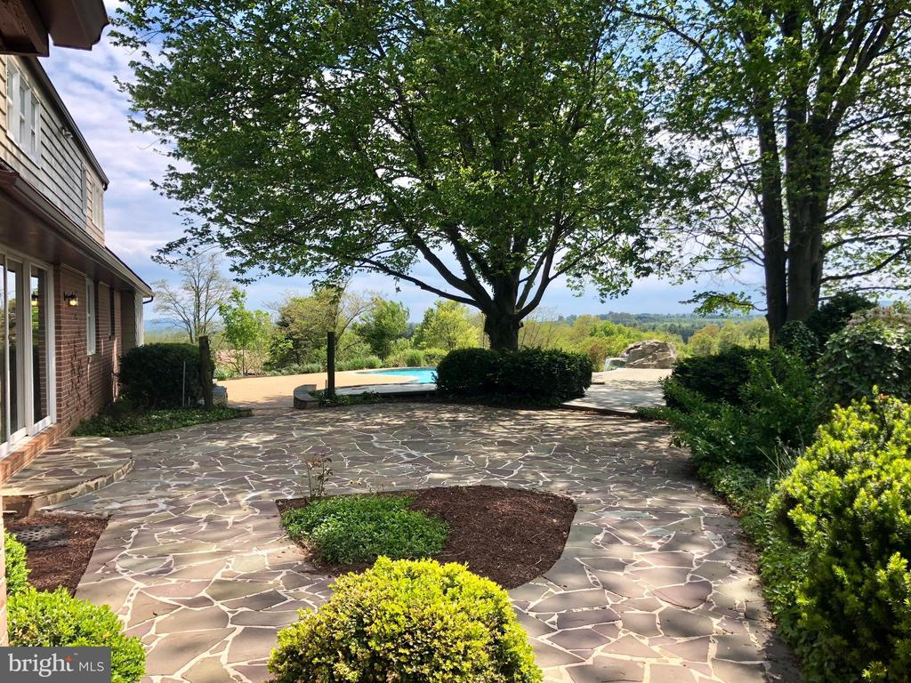 MATURE LANDSCAPING - 8450 PALMER RD, MIDDLETOWN