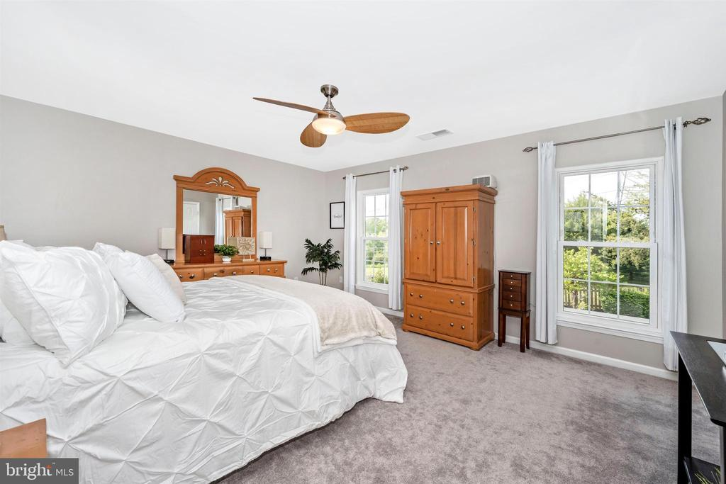 Two large windows and ceiling fan - 17004 INDIAN GRASS DR, GERMANTOWN