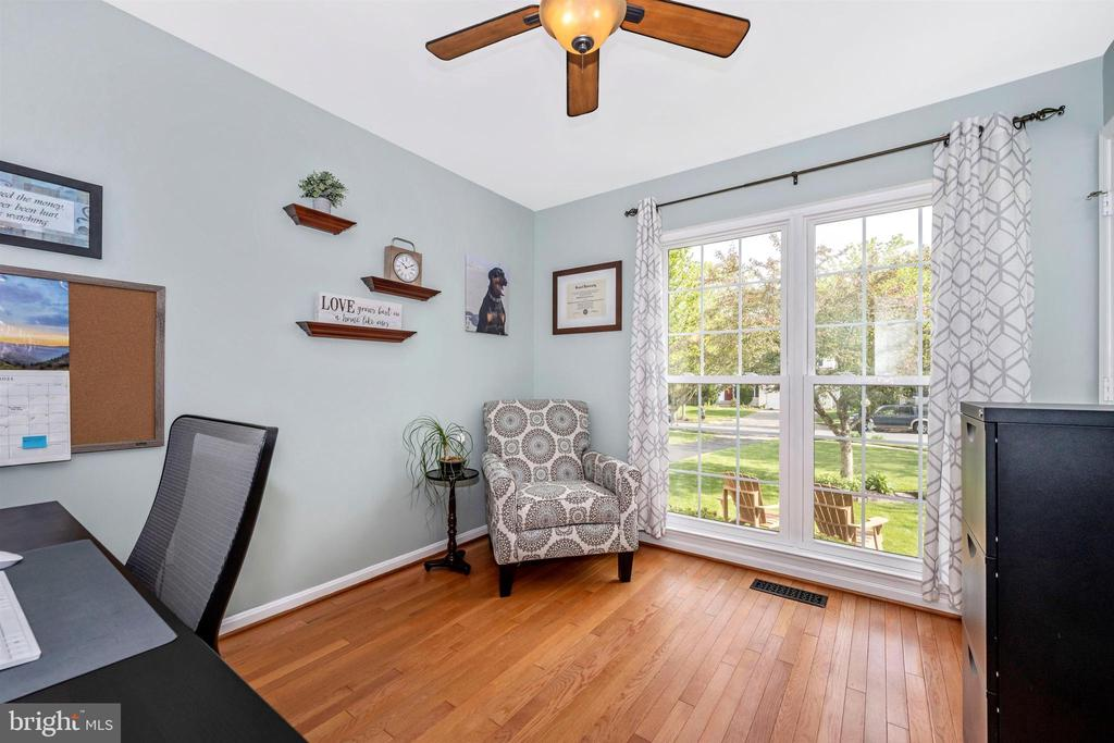 Ceiling fan & windows facing  front of house - 17004 INDIAN GRASS DR, GERMANTOWN