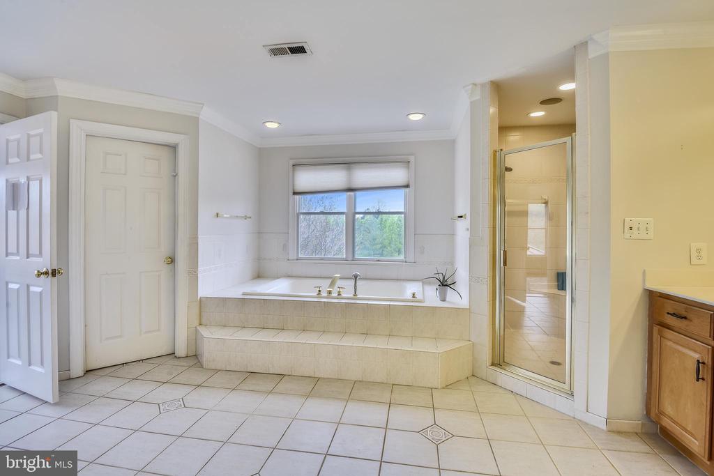 Shower and separate soaking tub - 20179 GLEEDSVILLE RD, LEESBURG