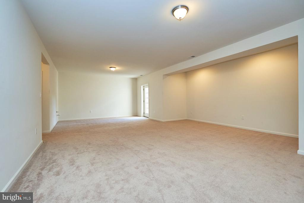 Huge Finished Lower Level - 13944 BARRYMORE CT, GAINESVILLE