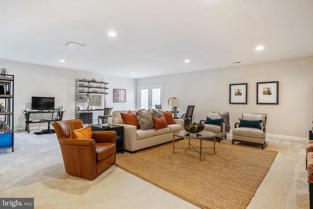 Finished walk-up basement. - 44246 SILVERPALM GROVE TER, LEESBURG