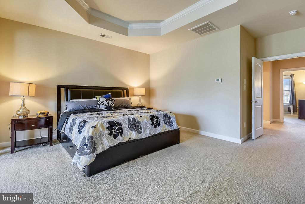 Tray ceiling - 24953 EARLSFORD DR, CHANTILLY