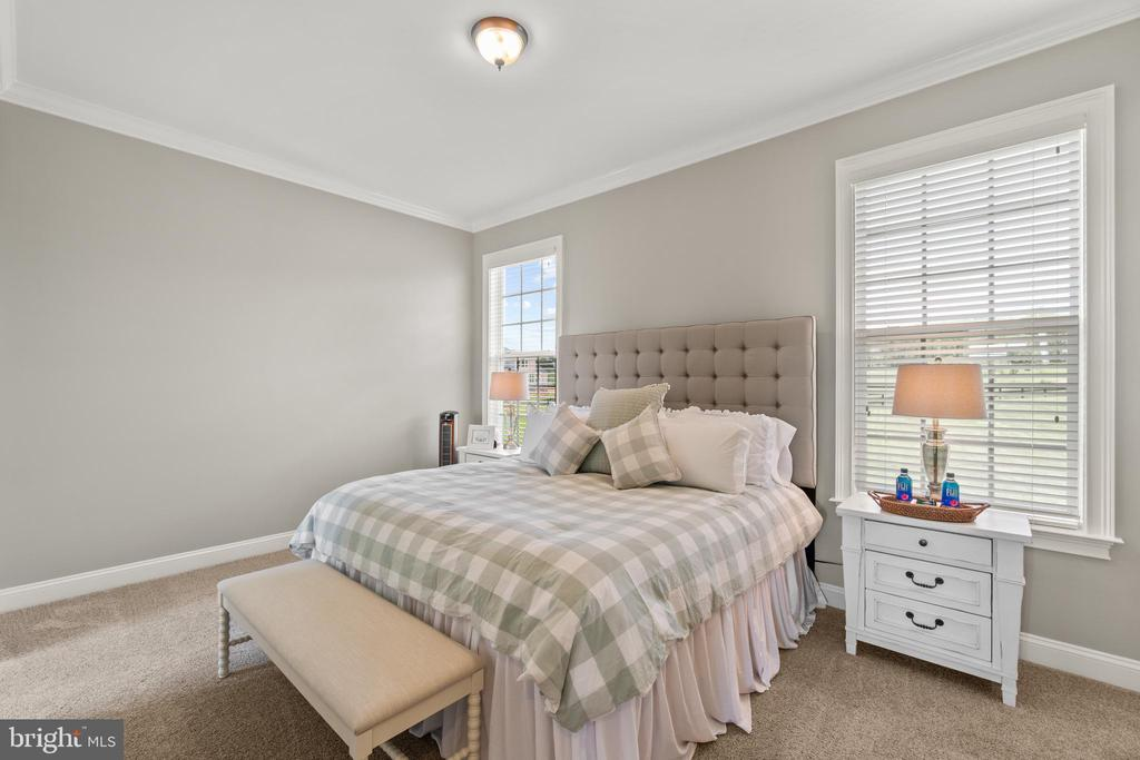 Main Level Guest Suite - 35543 GREYFRIAR DR, ROUND HILL