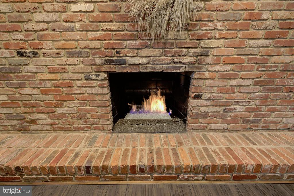 Family Room/Recreation Room - Gas Fireplace - 2502 CHILDS LN, ALEXANDRIA
