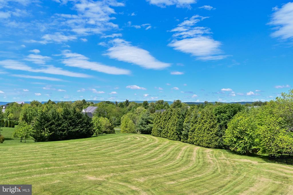 View from Balcony - 17215 IVANDALE RD, HAMILTON