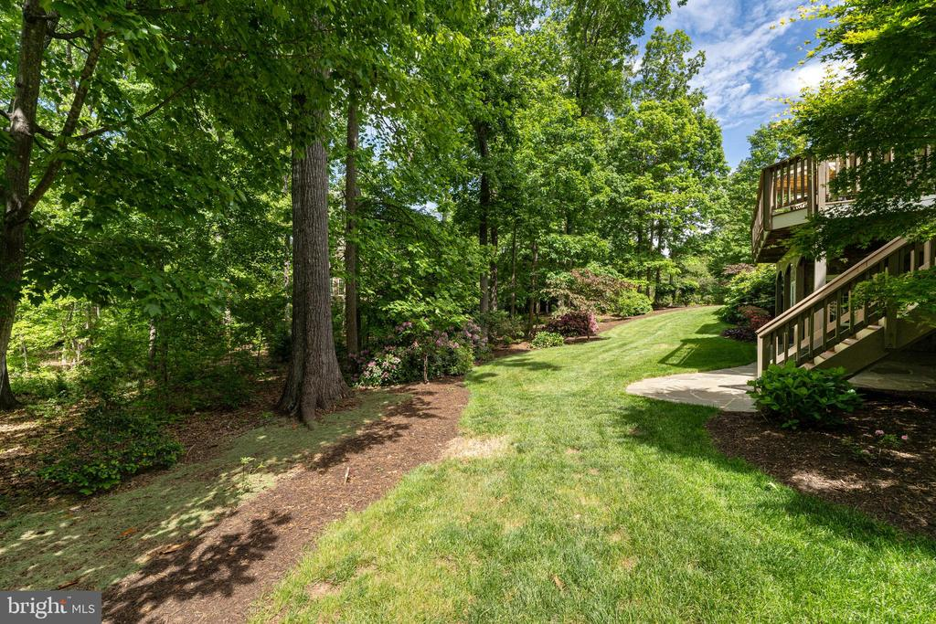 Mature Landscaping Surrounds the Home - 11500 TURNING LEAF CT, SPOTSYLVANIA