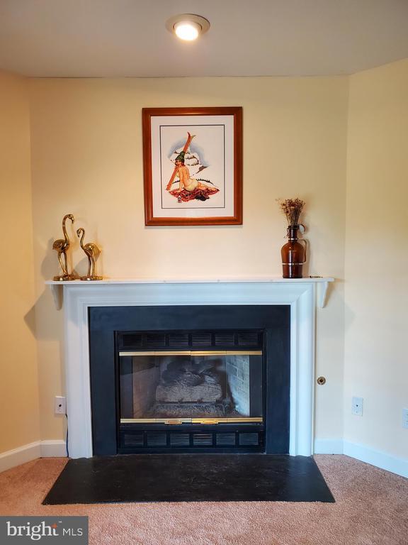 Fireplace - 21238 HEDGEROW TER, ASHBURN