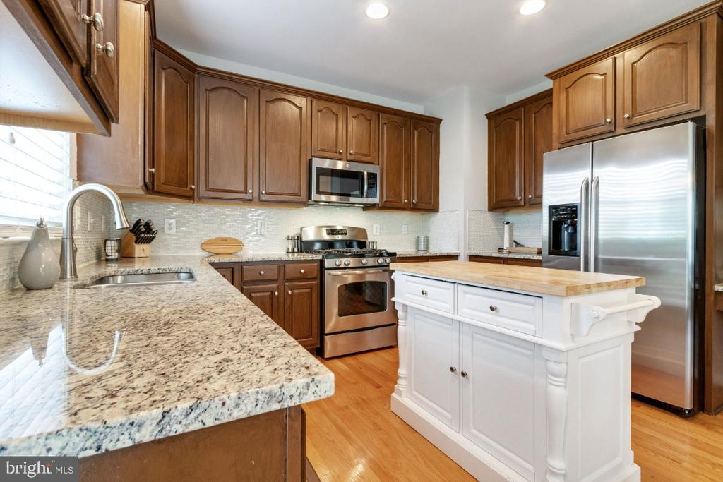 Upgraded Counters & Stainless Steel Appliances - 25554 DABNER DR, CHANTILLY
