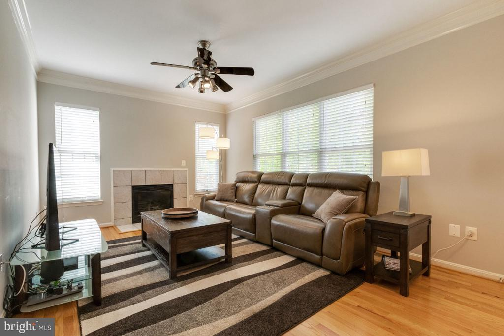 Crown Molding - 25554 DABNER DR, CHANTILLY