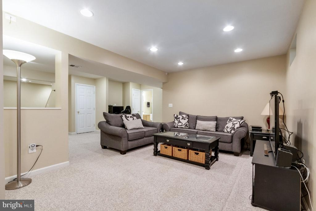 Lower Level Rec Room - 25554 DABNER DR, CHANTILLY