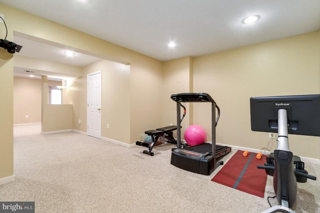 Exercise or Game Area - 25554 DABNER DR, CHANTILLY