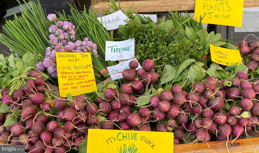 Community: Bounty of Saturday market at Courthouse - 2507 11TH ST N, ARLINGTON