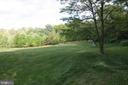 View of 7-acre conservation area - 25103 HIGHLAND MANOR CT, GAITHERSBURG