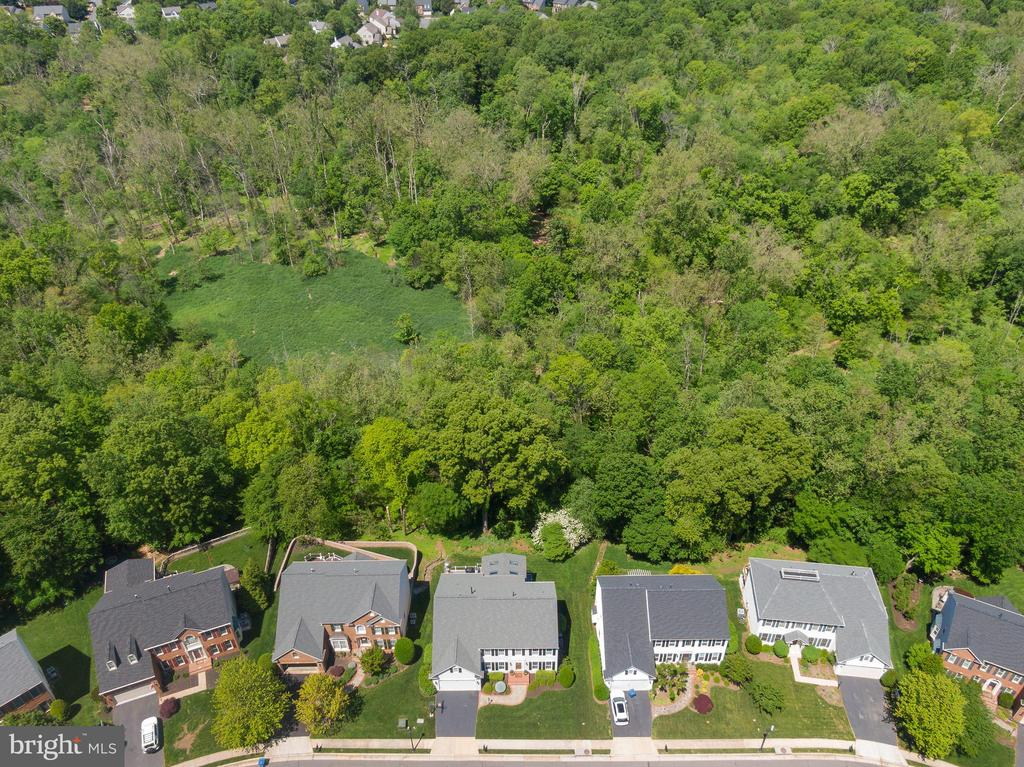 Just past the Trees - a play clearing! - 47273 OX BOW CIR, STERLING