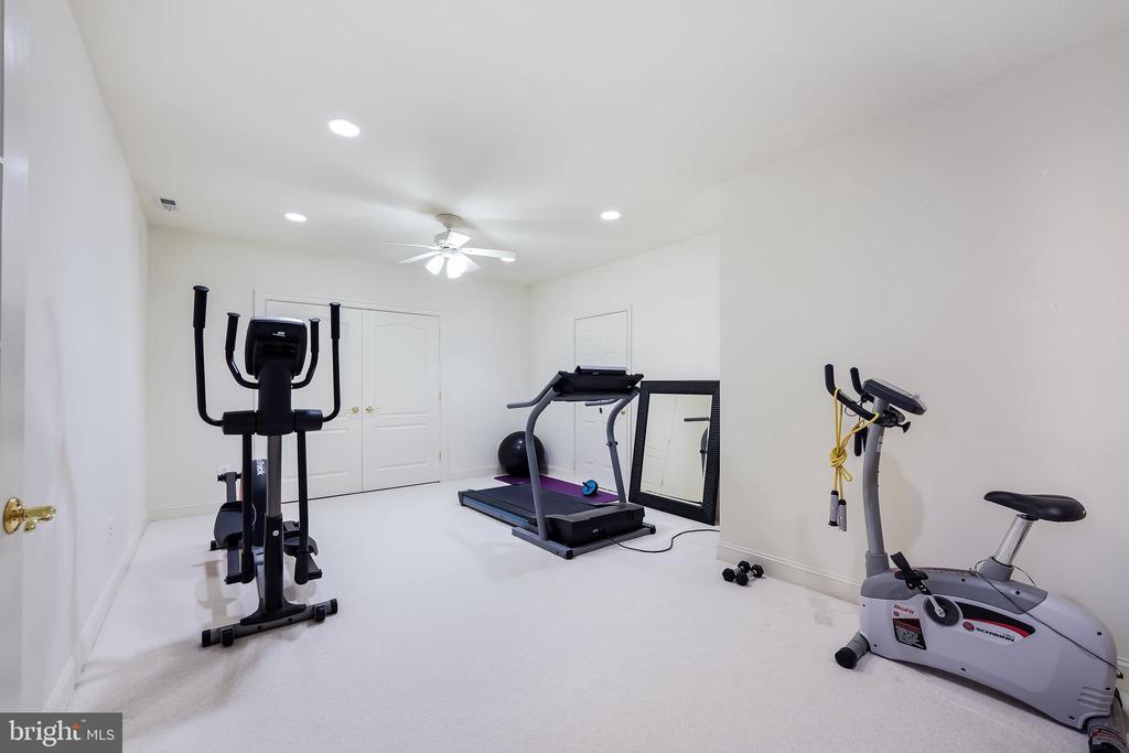 Exercise studio - 3680 WAPLES CREST CT, OAKTON
