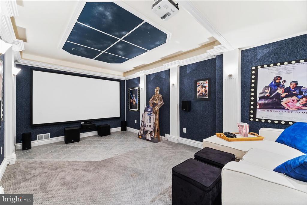 Movie Room - 19445 MILL DAM PL, LEESBURG