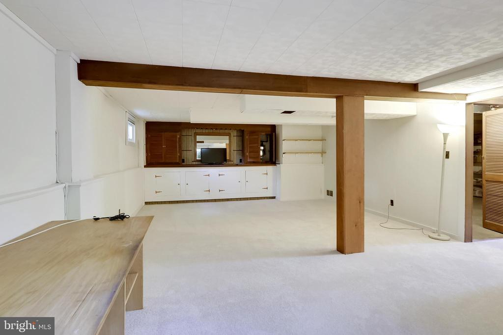 Huge Recreation Room with built-ins and new carpet - 2415 EVANS DR, SILVER SPRING