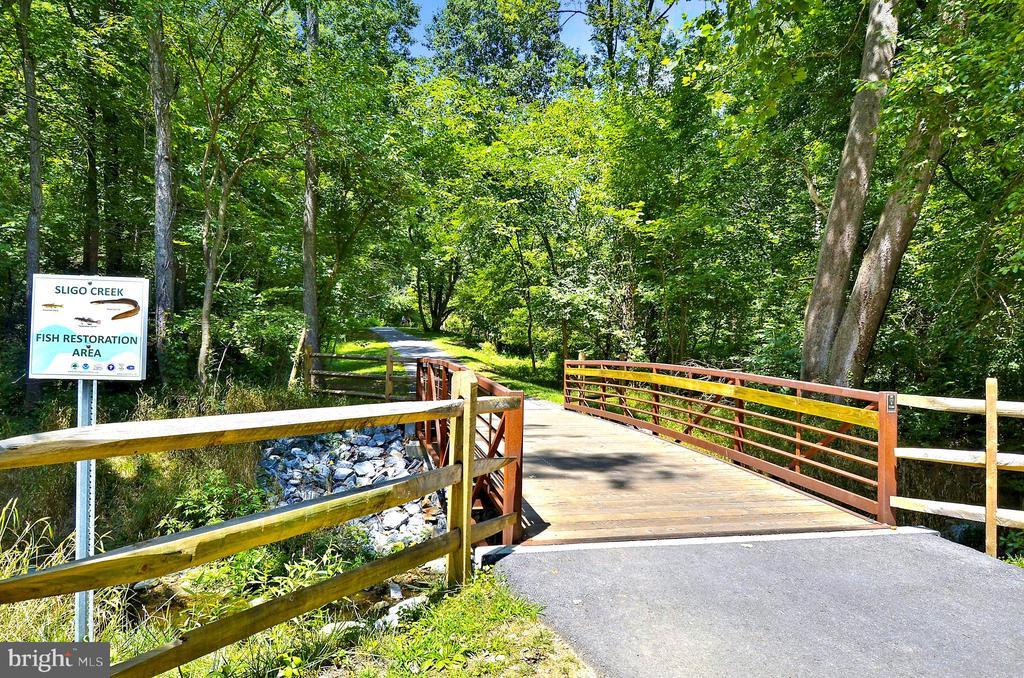 Sligo Creek Park - 2415 EVANS DR, SILVER SPRING