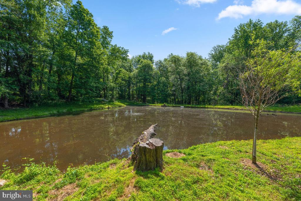 Stocked pond - 12645 OLD FREDERICK RD, SYKESVILLE